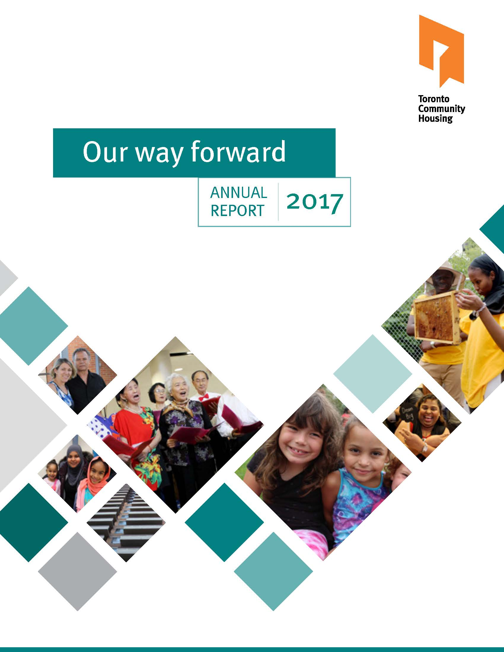 Cover of the 2017 Annual Report