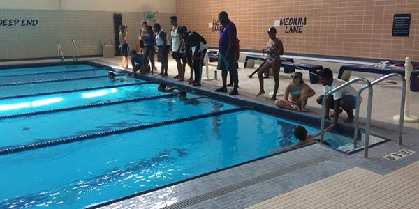 A group of swimmers getting ready for their race