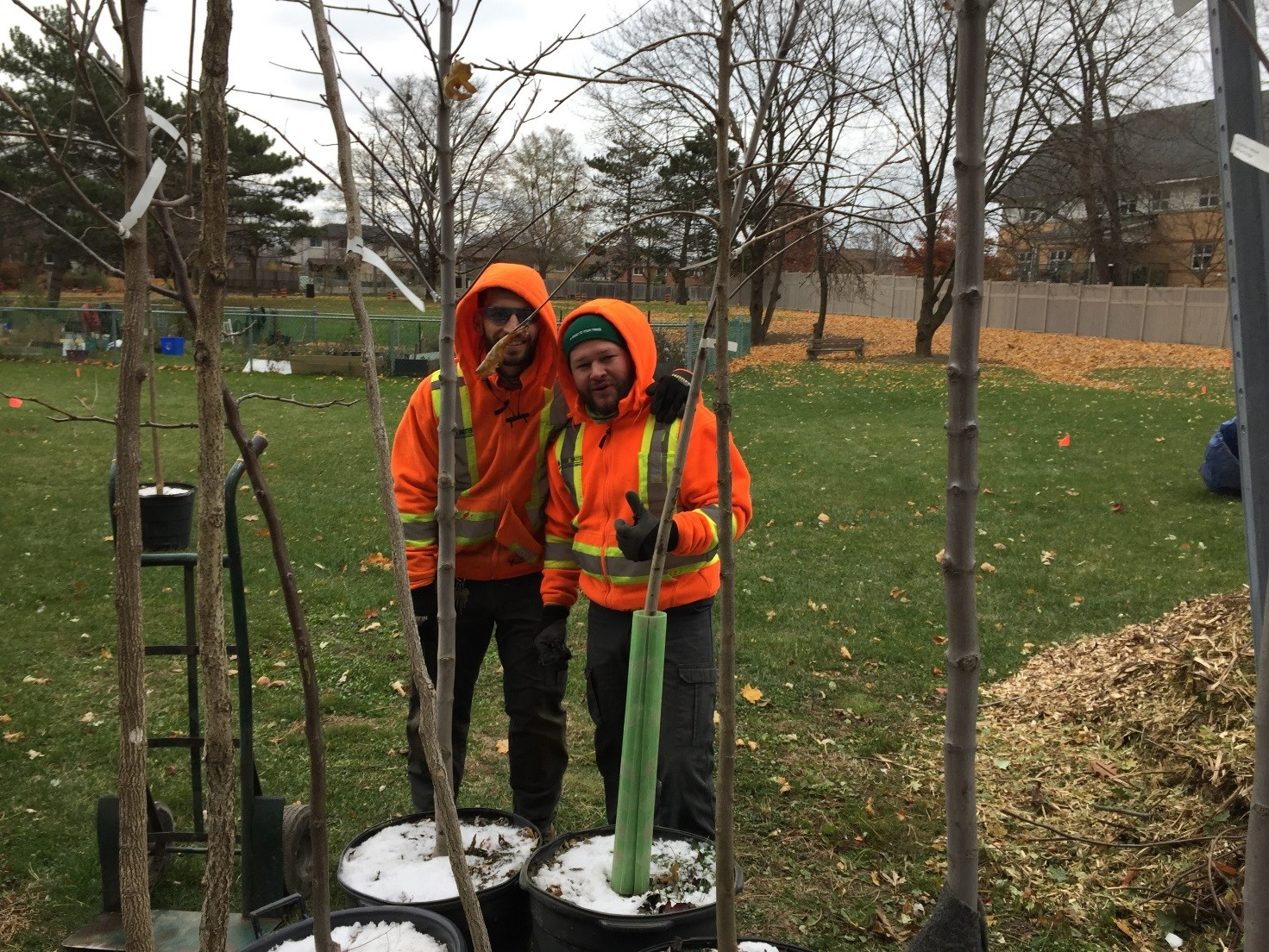 TCHC tree planting project in Kendleton_2.jpg