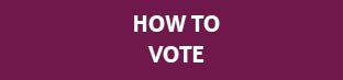 Web Button - How to Vote.jpg